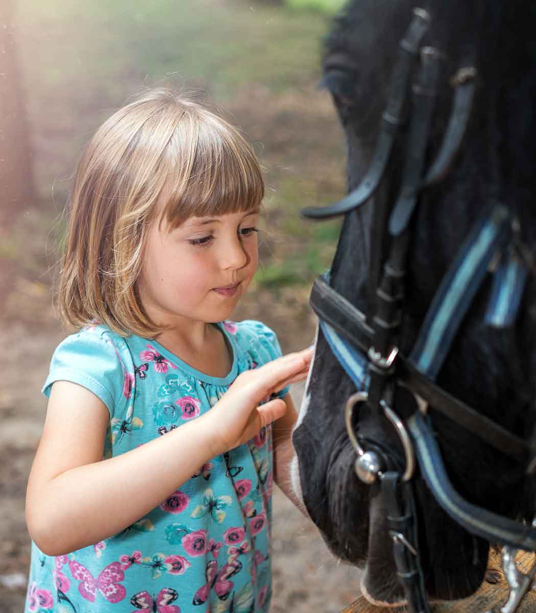 Little girl petting a pony